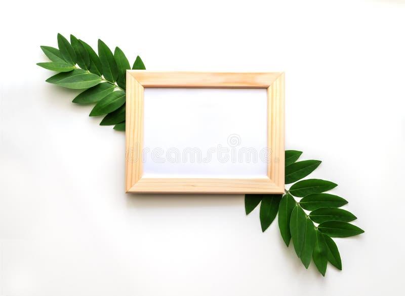 Leeres hölzernes Fotorahmenmodell mit Grün verlässt herum, auf weißem Hintergrund stockfotos