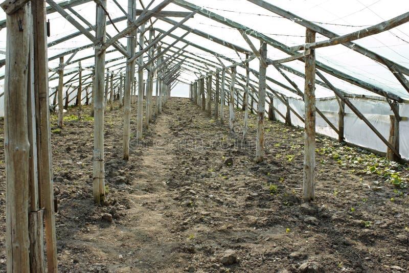 Leeres hölzernes Gewächshaus, bevor Sämlinge gepflanzt werden stockbild