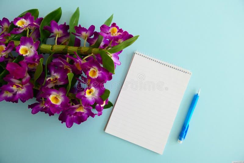 Leeres Notizbuch, blauer Stift und rosa Orchideen-Blumen-Blüte auf einem hellblauen Hintergrund stockfoto