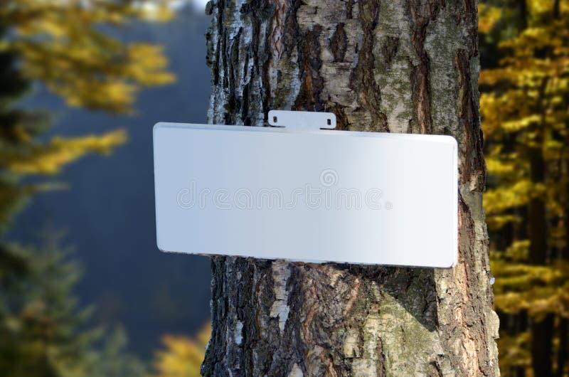 Leeres Zeichen auf Stamm des Baums im Herbstwald stockbilder