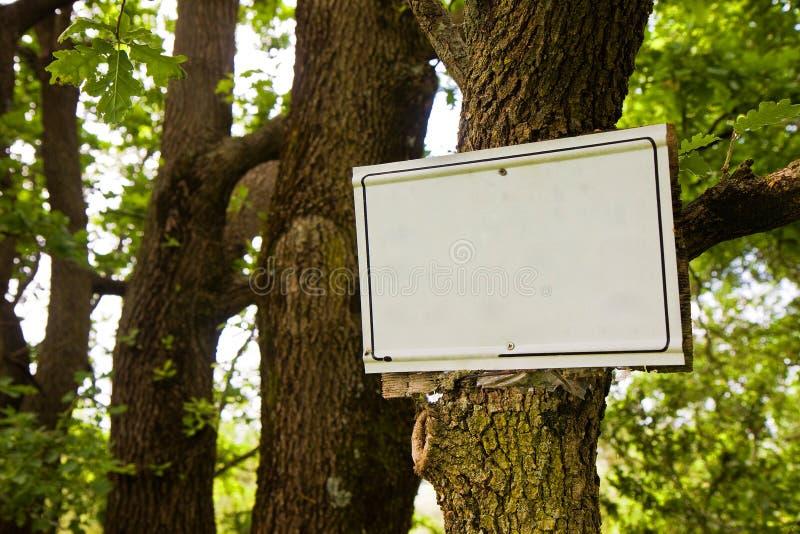 Leeres Zeichen, welches das Hängen am Baumstamm anzeigt stockfotos