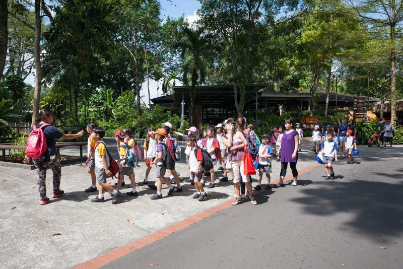 Leerlingen en leraren bij de Dierentuin van Singapore. royalty-vrije stock afbeelding