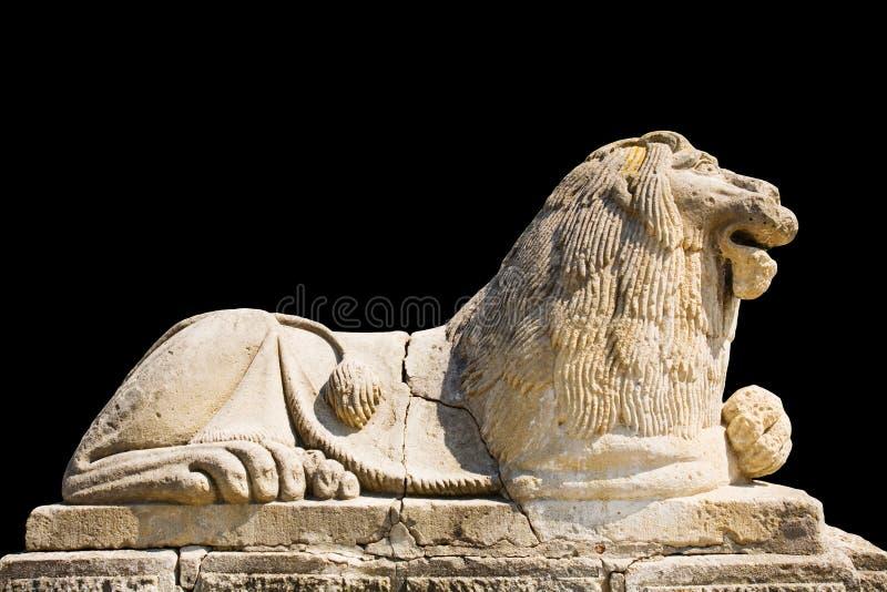 Leeuw die op zwarte achtergrond wordt geïsoleerdp royalty-vrije stock afbeelding