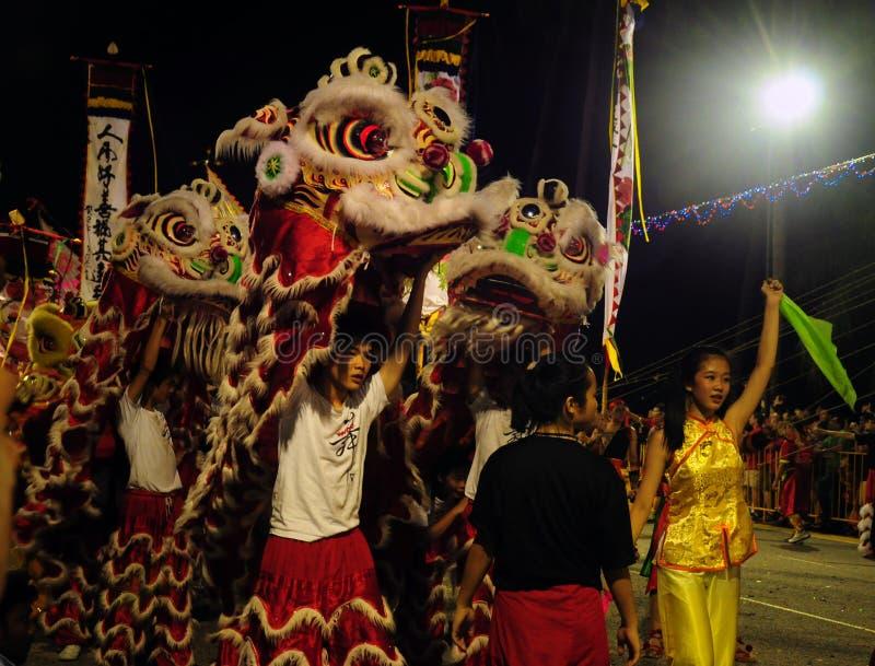 Leeuwdansers in chingay festival stock afbeeldingen