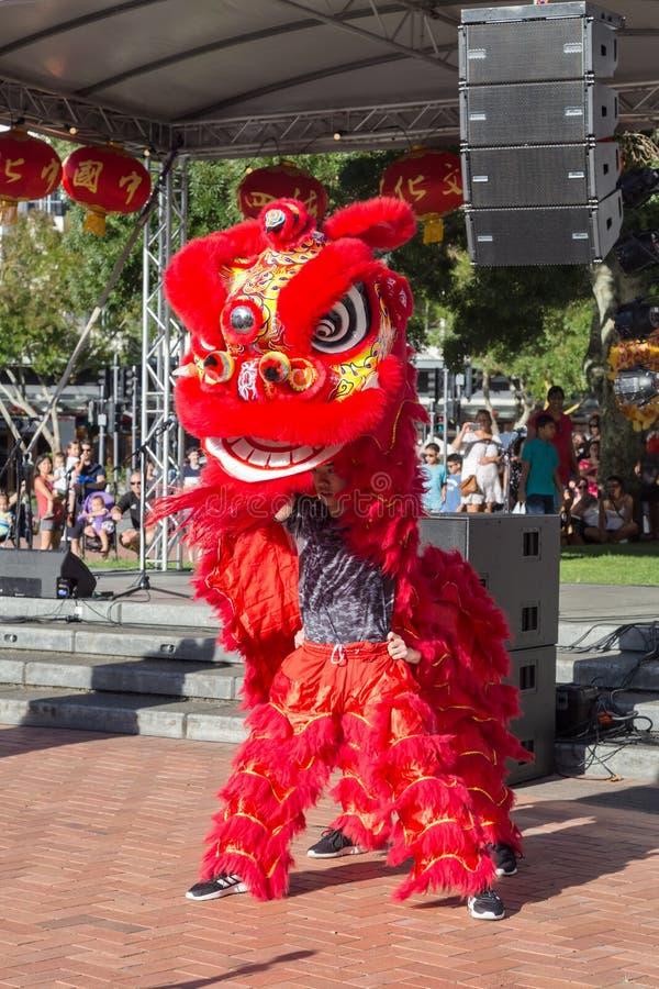Leeuwdansers in een helder rood kostuum, Chinees Nieuwjaar royalty-vrije stock afbeeldingen