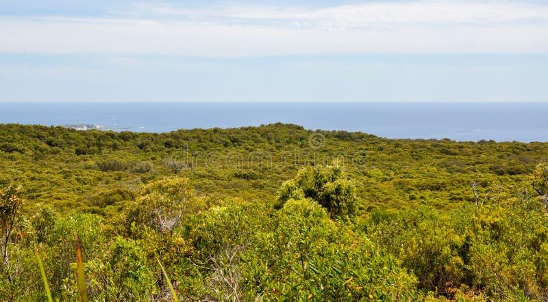 Leeuwin-Naturaliste National Park: Ocean Views royalty free stock photos