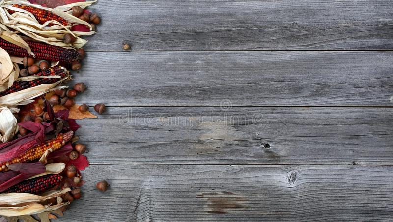 Left border of seasonal Autumn decorations on aged wood for the Thanksgiving holiday background setting. Leaves, corn and acorns on left border of weathered wood stock photography
