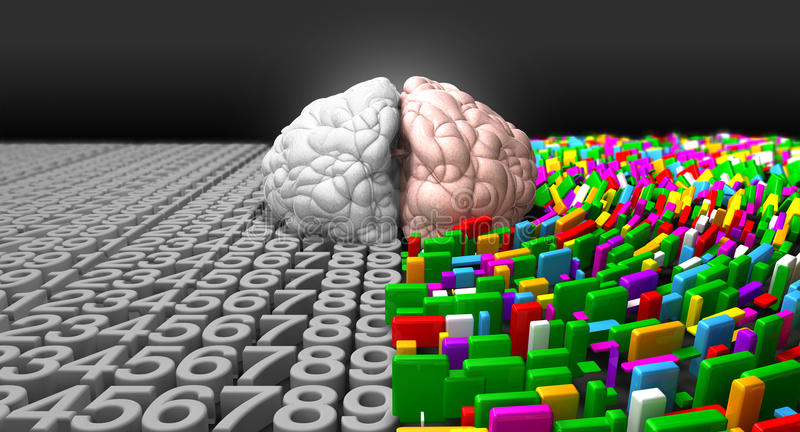 Download Left Brain & Right Brain Stock Images - Image: 26351714