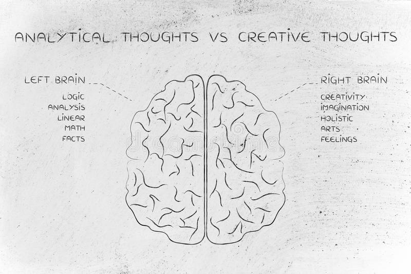 Left and right brain with function descriptions, analytical vs c. Analytical thoughts vs creative thoughts: flat illustration of a brain with left and right royalty free stock photography
