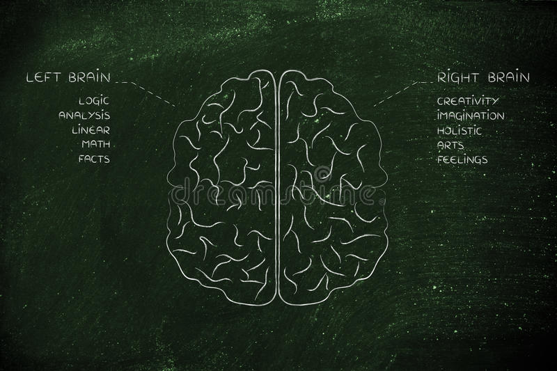 Left and right brain with function descriptions. Flat illustration of a brain with left and right caption and detailed function descriptions stock photography