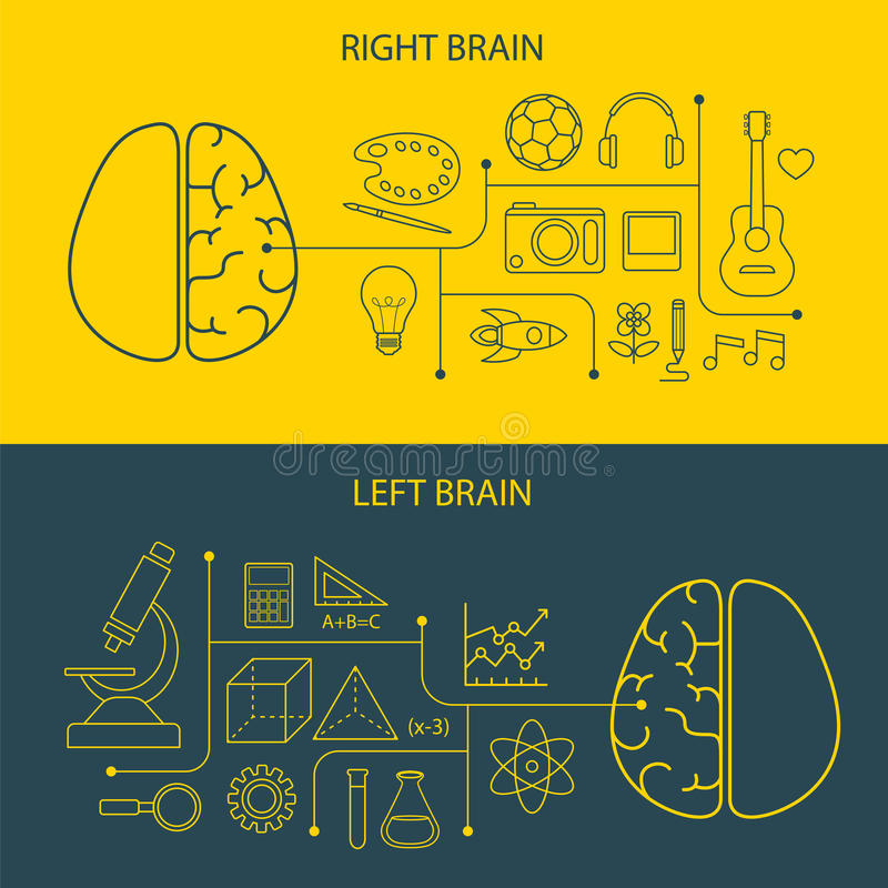 Left and right brain functions concept. Vector left and right brain functions concept vector illustration