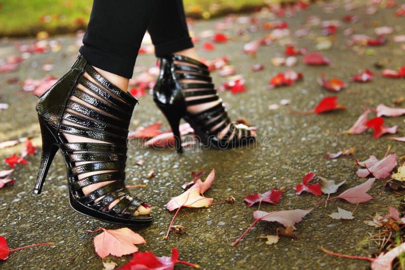Leg fashion royalty free stock photography