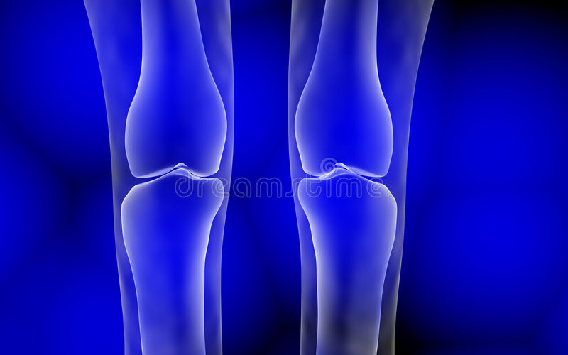 Leg joint. Computer generated illustration of a leg joint royalty free illustration