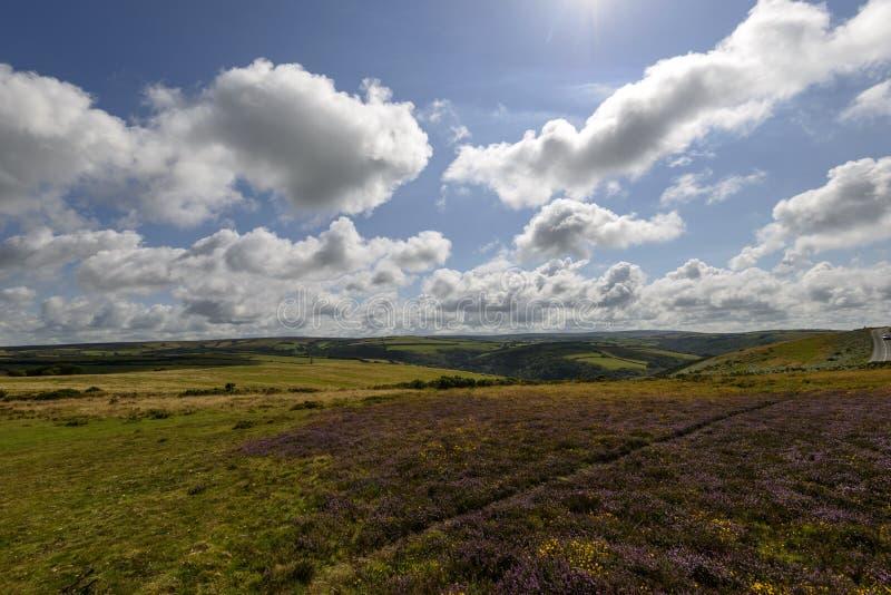 Leg landschap, Exmoor vast stock fotografie