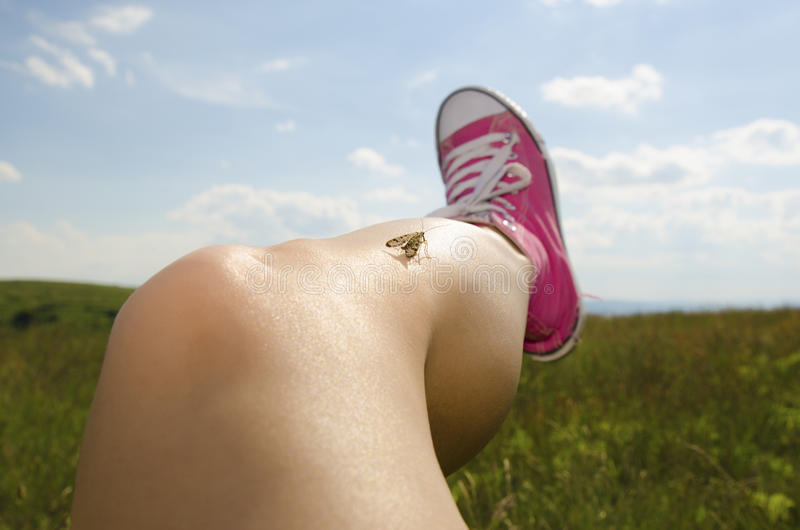 Leg with smooth skin. Leg with smooth healthy skin royalty free stock photo