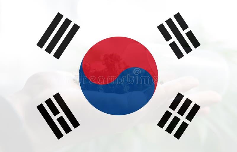 Legalização da marijuana médica no coreano sul ilustração do vetor