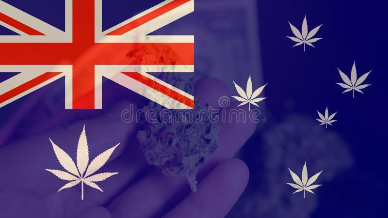 Legalizacja medyczna marihuana w Australia Marihuana eksport Australia w 2019n obraz stock