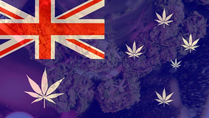 Legalizacja medyczna marihuana w Australia Marihuana eksport Australia w 2019n obraz royalty free