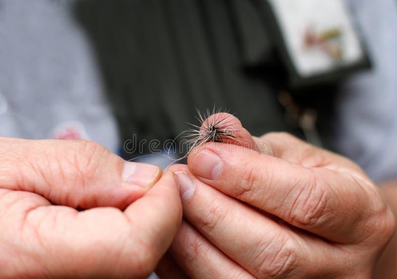 Legando su una mosca immagine stock