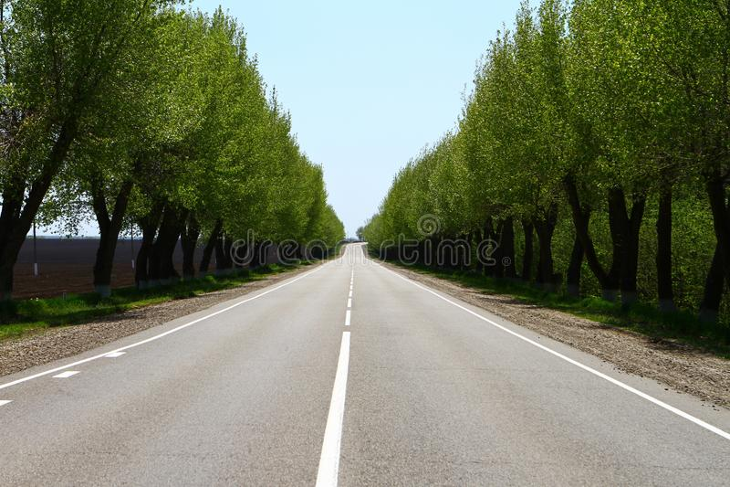 Lege asfaltweg bij platteland, de zomer zonnige dag royalty-vrije stock foto