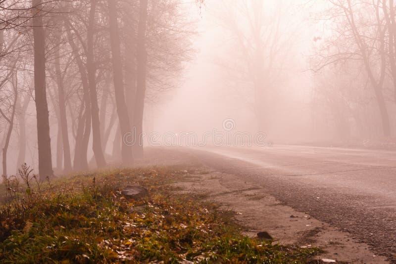 Lege asfaltweg op een mistige de herfstdag stock afbeelding
