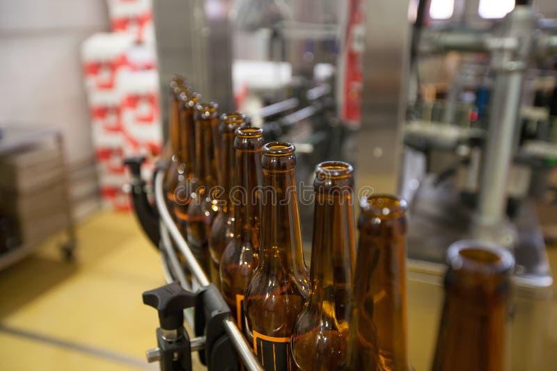 Lege bierflessen, op een transportband, Bindende brouwerij stock fotografie