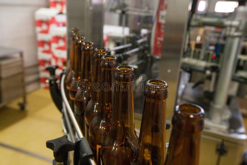 Lege bierflessen, op een transportband, Bindende brouwerij stock afbeelding