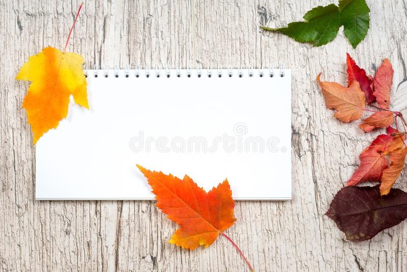 Lege blocnote met kleurrijke de herfstbladeren stock foto