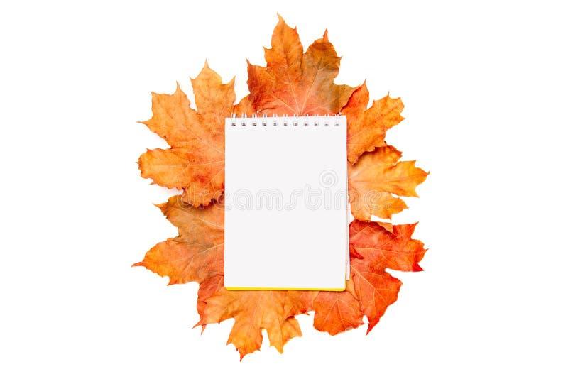 Lege blocnote voor het schrijven of voor een wenslijst op een de herfstachtergrond van gekleurde esdoornbladeren die op wit wordt royalty-vrije stock afbeelding