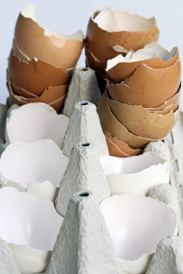 Lege eierschalen in een eikarton royalty-vrije stock afbeelding