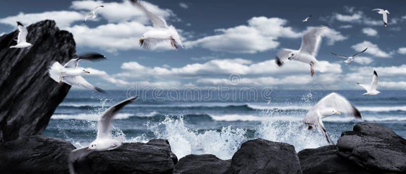 Lege fairytale overzeese meningsachtergrond met zeemeeuwen, golven en rotsen royalty-vrije stock fotografie