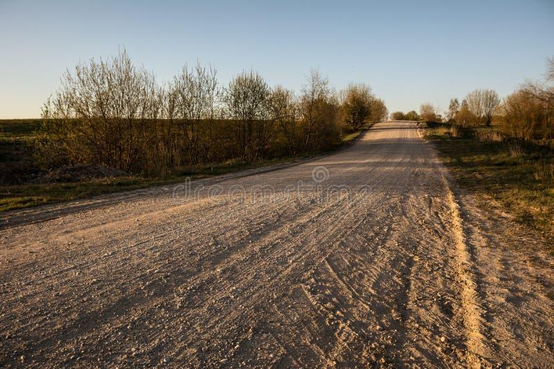 Lege grintweg in platteland in perspectief met bomen in su royalty-vrije stock foto's
