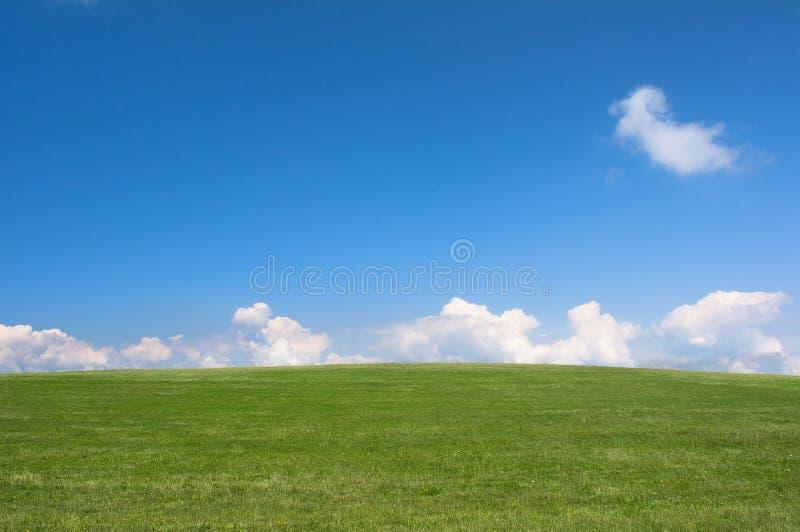 Lege groene weide en blauwe hemel royalty-vrije stock foto