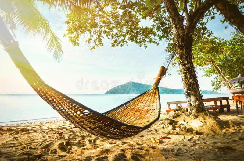 Lege hangmat tussen palmen op tropisch strand Paradijseiland voor vakantie en ontspanning stock foto's