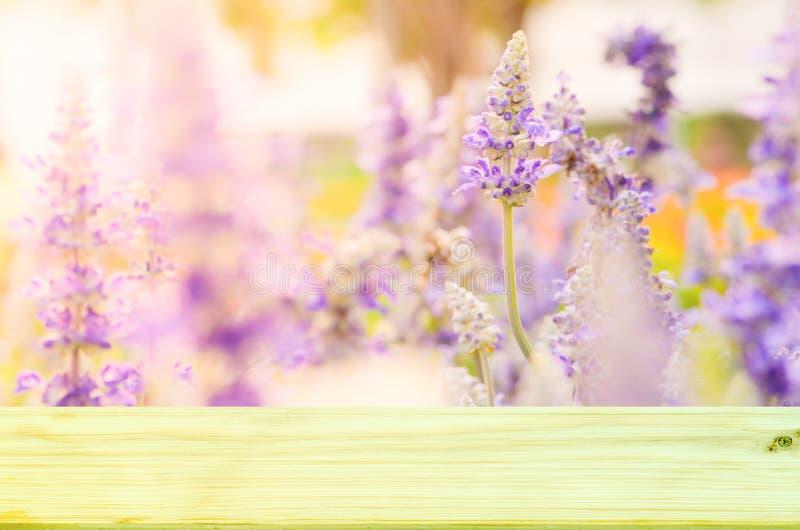 Lege hoogste houten op mooie bloem in kleurrijke kleuren zachte nadruk voor achtergrond stock foto's
