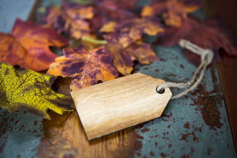 Lege houten markering met bladeren royalty-vrije stock afbeelding
