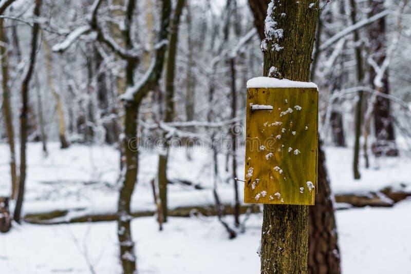 Lege lege houten tekenraad op een boom, boslandschap tijdens wintertijd, wit sneeuwlandschap royalty-vrije stock foto's