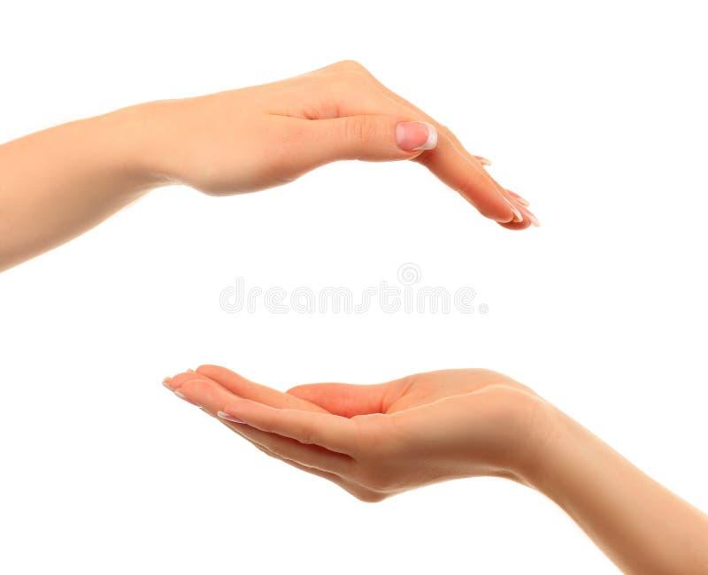 Lege open hand twee die op witte achtergrond wordt geïsoleerda stock afbeelding