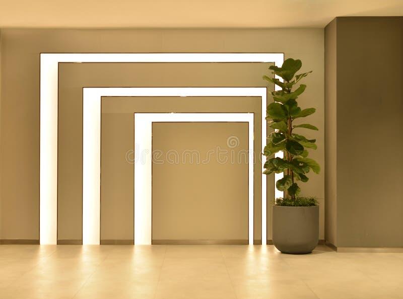 Lege ruimte met boompot en lichten, binnenlands ontwerp stock afbeelding