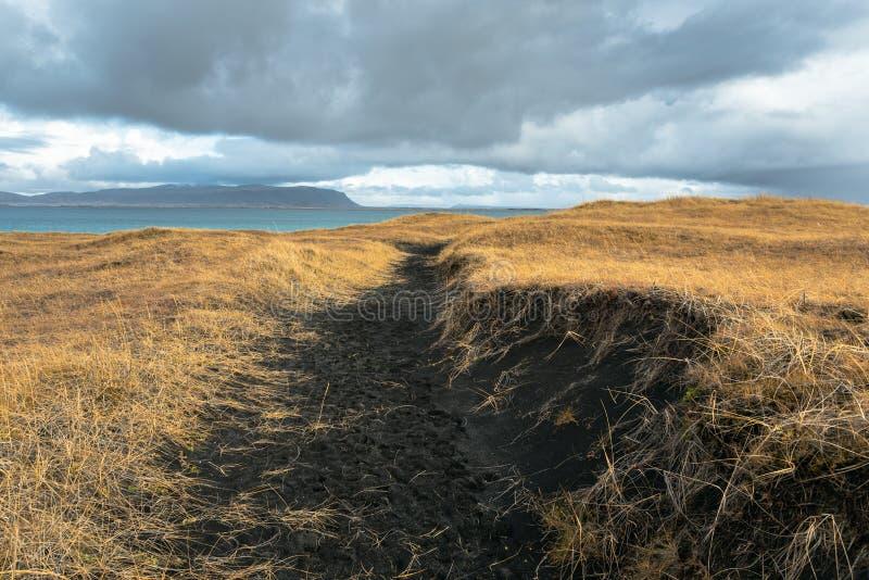 Lege smalle weg door zwarte zandduinen in IJsland stock afbeeldingen