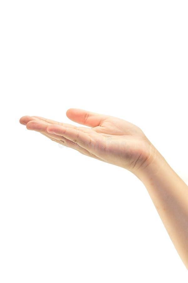 Download Lege Vrouwelijke Open Die Hand Op Wit Wordt Geïsoleerd Stock Afbeelding - Afbeelding bestaande uit vinger, wijfje: 39100039