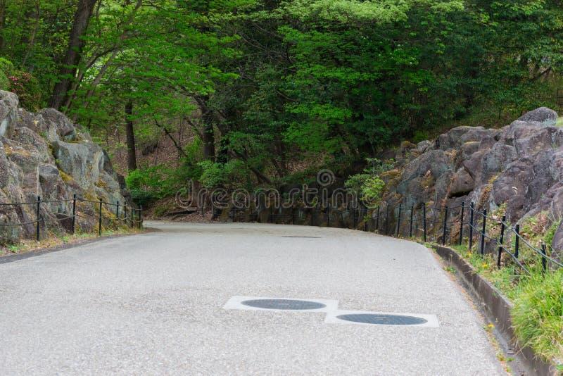 Lege weg in bos op berggeheimzinnigheid stock foto