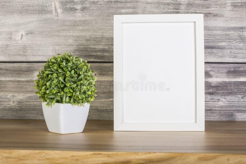 Lege witte kader en installatie stock foto