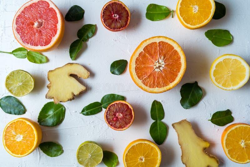 Legen Sie flach die rohe frische Zitrusfrucht - Orange, Zitrone und Pampelmuse, mit Ingwer und Lindenblättern lizenzfreie stockbilder