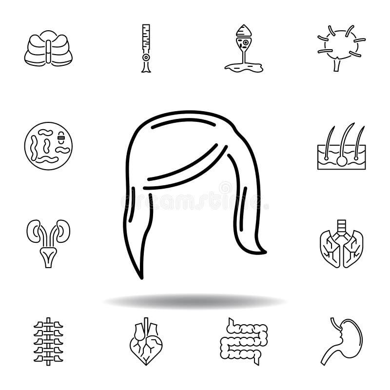 legen Sie Haarentwurfsikone der menschlichen Organe von der weiblichen Zeichen und Symbole k?nnen f?r Netz, Logo, mobiler App, UI stock abbildung