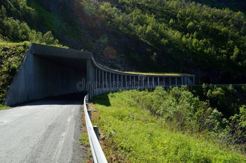 Legen Sie halb in der Gebirgsseite auf senja Insel für Steinschlagschutz einen Tunnel an lizenzfreies stockfoto