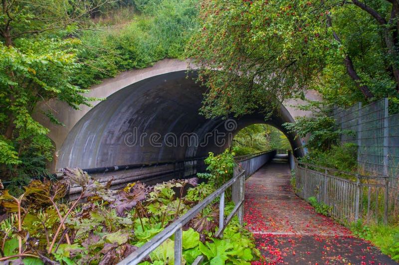 Legen Sie unter der Eisenbahn nahe Ringsted in Dänemark einen Tunnel an stockfotos