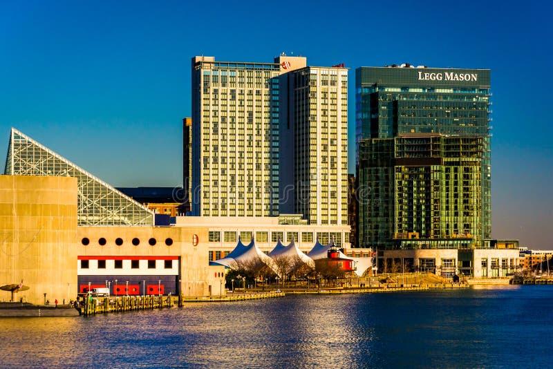 Legg Mason budynku i Marriott nabrzeża hotel w austerii obrazy stock