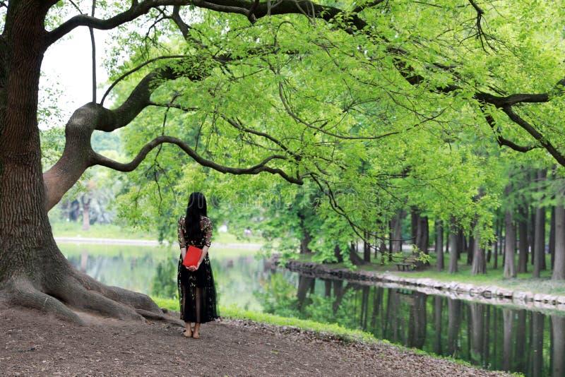 Legga un supporto di libro sotto un albero del fiore fotografia stock