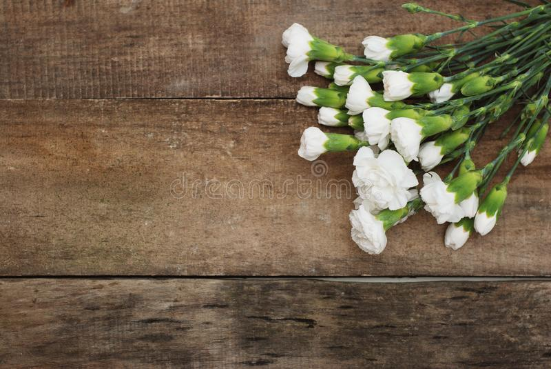 Leghi il fondo di legno rustico isolato composizione bianca di disposizione del mazzo del fiore del garofano immagini stock libere da diritti
